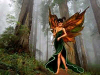 Angels and Fairies Screensaver
