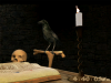 Magus Crow 3D Screensaver