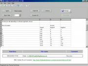 ABC Amber Excel Converter