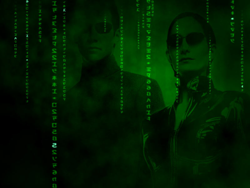 http://www.tomdownload.com/desktop_enhancements/screensavers/images/matrix_reality_3d_big.jpg