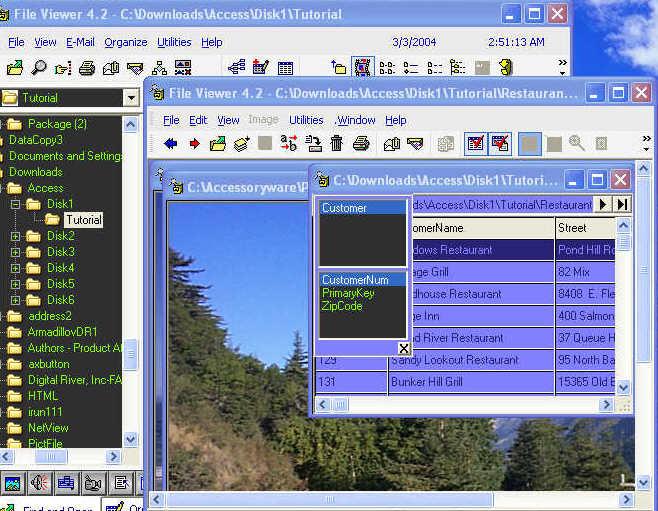 File Viewer 45 ManagementViewer